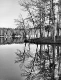 Black and white of winter Reflections Royalty Free Stock Photo