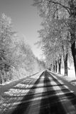 Black and white winter way Stock Images