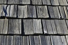 Black And White, Wood, Structure, Pattern royalty free stock photos