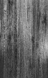 Black and white wood texture. Stock Images