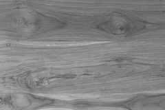 Black and white wood texture Royalty Free Stock Image