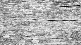 Black and white Wooden background Stock Image