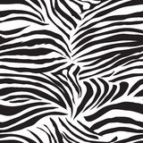 Black and white zebra animal seamless vector print Royalty Free Stock Photo