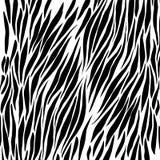 Black and white zebra background Royalty Free Stock Photo