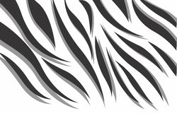 Black and white zebra 3d abstract vector design vector illustration