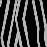 Black and white zebra texture. Simple vector background Stock Images