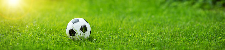 Black and whithe ball lying on green grass Stock Images