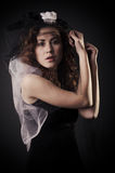 Black Widow Royalty Free Stock Image