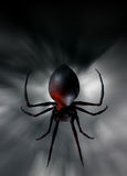 Black widow spider. Illustration of black widow spider dangeling down on its thread Royalty Free Stock Images