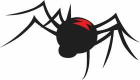 BLACK WIDOW SPIDER Stock Photos