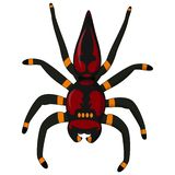 Black Widow Spider / red back spider Isolated on White Background stock illustration