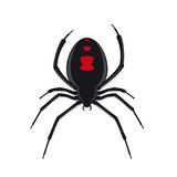 Black widow spider vector Royalty Free Stock Image