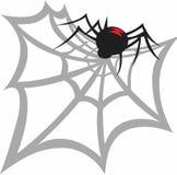 BLACK WIDOW SPIDER WEB Royalty Free Stock Photos