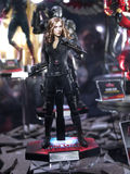 Black widow in toy soul 2015 Royalty Free Stock Photos