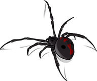 Black Widow Vector 2 Royalty Free Stock Photo