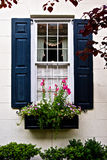 Black Window Shutters with Flowers in Flower Box. Black window shutter with a black flower box with blooming flowers framed by shrubbery photographed in Royalty Free Stock Photos