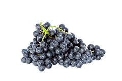 Black wine grapes isolated on white background. Fresh bunch of ripe wine grapes isolated on white background Stock Photos