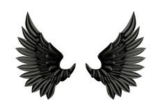 Black wing isolated Stock Photos