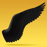 Black wing Royalty Free Stock Photos