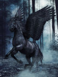 Black winged horse Royalty Free Stock Image
