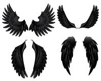 Black wings. In white background vector illustration