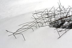 Black wire on snow. Stock Images