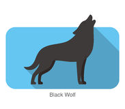 Black wolf standing and roaring Royalty Free Stock Images