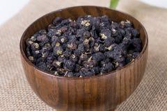 Black wolfberry-- Lycium barbarum. Royalty Free Stock Photography