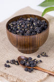 Black wolfberry-- Lycium barbarum. Stock Photos