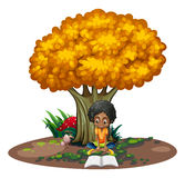 A black woman reading under the tree Stock Image
