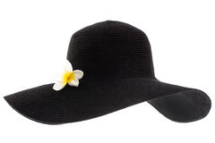 Black woman's hat Stock Photography