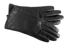 Black women gloves. On a white background stock images