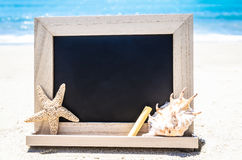 Black wood chalkboard with seashell, starfish and chalk on the s Royalty Free Stock Photography