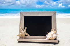 Black wood chalkboard with seashell  and starfish on the sandy b Stock Photography