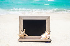 Black wood chalkboard with seashell and starfish on the sandy be Stock Photo
