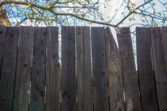 Black wood fancy. Black wood garden fancy texture Royalty Free Stock Photos