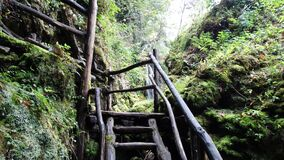 Black Wood Stairs Going to Waterfall during Daytime Royalty Free Stock Photos