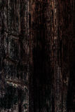 Black wood texture, close up of wooden wall. Abstract backgroun stock photo