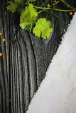 Black wooden background. Blackboard. Grunge texture. Green and groats and white Linen cloth from above. Copy space for Stock Photo