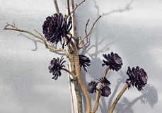 Black wooden flowers, on wall background Stock Photos