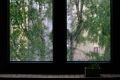 Black Wooden Frame Glass Center Window Near Green Trees Royalty Free Stock Photo