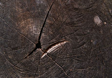 Black wooden texture Stock Photography