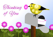 Black and Yellow Bird on Mailbox. Black and yellow (Goldfinch) bird sitting on gray, open mailbox. Bird is holding pink flower in its beak. Stamped envelope in Royalty Free Stock Photo
