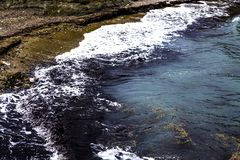 A black and yellow coloured litter floating on the surface of the river and contaminating it. There are some more litters being du royalty free stock images