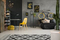 Black and yellow posters on concrete wall in spacious flat inter. Ior with a bike behind a black bed and study space with yellow chair and desk. Real photo royalty free stock images