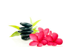 Black zen stone with red flowers Stock Photo