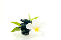 Black zen stone with  white flower Stock Images