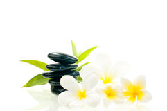 Black zen stone with white flowers Stock Photography