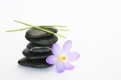 Black zen stones with bamboo en crocus on empty white background Stock Photos