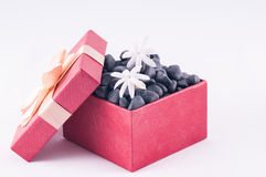 Black zen stones in a box with white Jasmine flowers Royalty Free Stock Photo